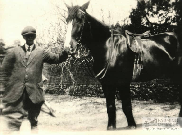 Bert Cooper (David's dad) with horse