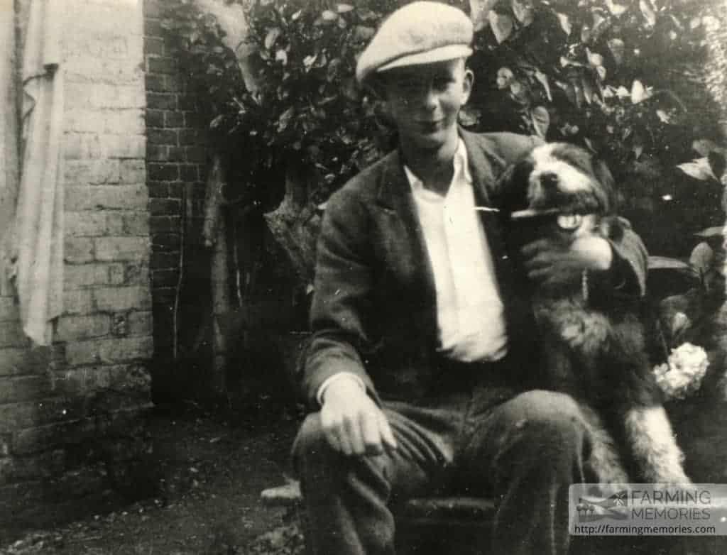 David Cooper - Bert and dog