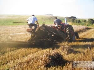 Geoffrey & Glen Draper with threshing machine