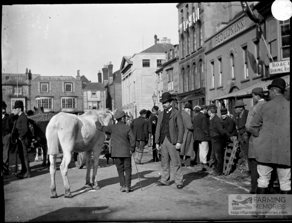 Glass negative of horse transport and a crowd assembled in St. James Square, Newport, for market day