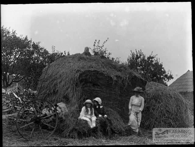 Glass negative of family and haystack