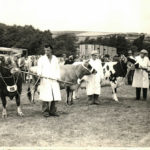 Peggy Jolliffe at the County Show