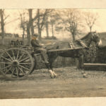 Knackers cart and horse