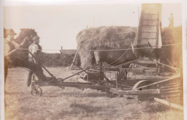 Grandad Lock haymaking
