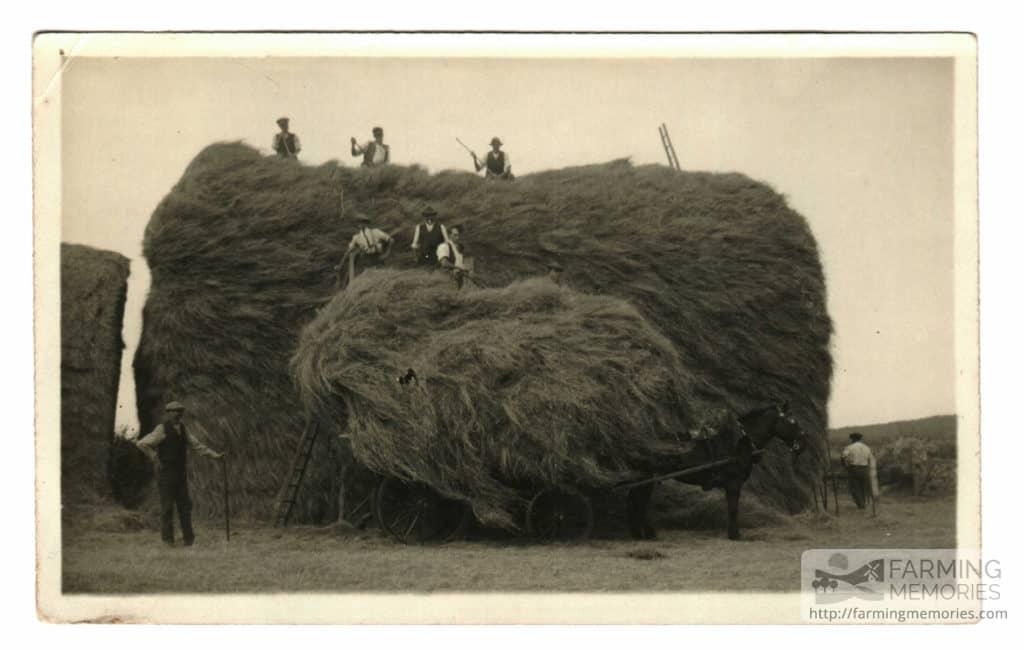 Hay rick at Park Green Farm