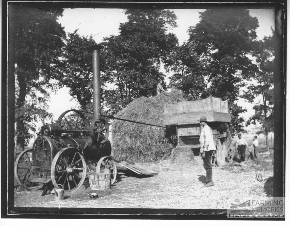 A black and white photograph of a steam engine driving a threshing machine beside straw stack