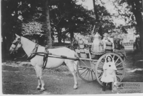 Sepia photograph showing milk float and horse belonging to Mr Morris of The Mall, Newport. Small girl in sunbonnet and boots standing by float.