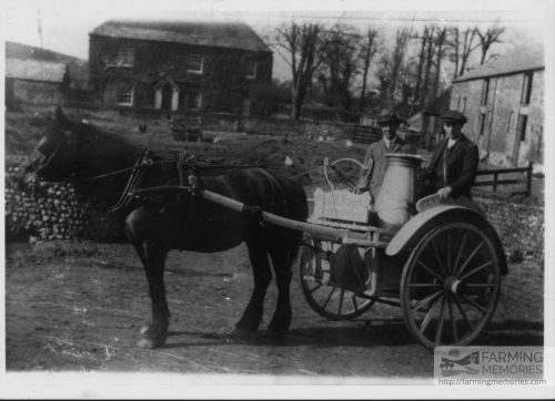 Black and white photo of a man and boy with a milk churn in a cart being pulled by a pony. The cart is marked 'Pan Manor Dairy' over the wheel and Morris, Pan Manor Farm at the front