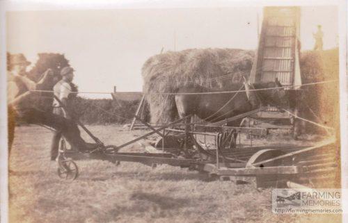 Grandad Lock haymaking
