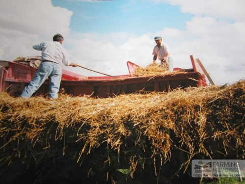 Geoff Phillips - Haymaking