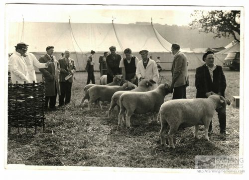 Agricultural Show 1960s Bert Hobbs